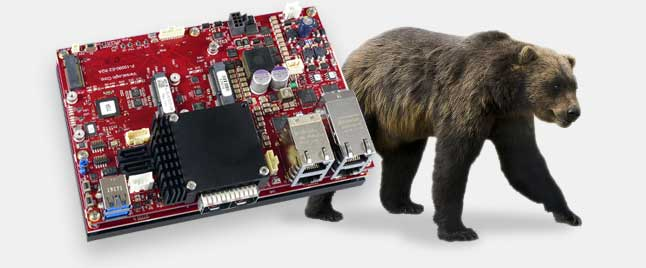 Grizzly embedded server unit